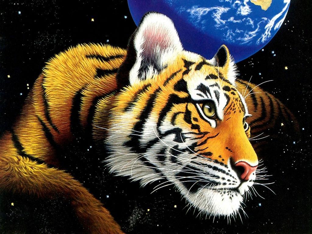 Tigre Gifs Animado: Gifs Animados Cia: Tigre No Planeta Terra