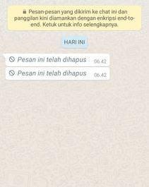 contoh pesan whatsapp yang dihapus