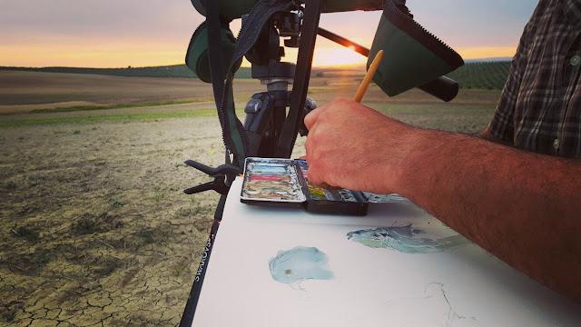 Diego Ortega Alonso tomando apuntes del natural en acuarela de aguilucho cenizo para campaña de salvamento por Goteo crowdfunding