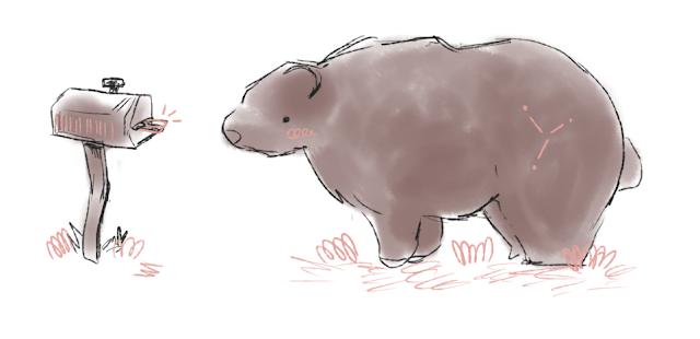 Carta a un oso