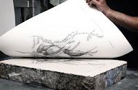 Litografi yöntemiyle taş üzerindeki kuş resimlerinin kağıt üzerine basılması