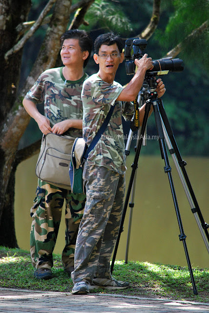 Bird Watchers in Sandakan