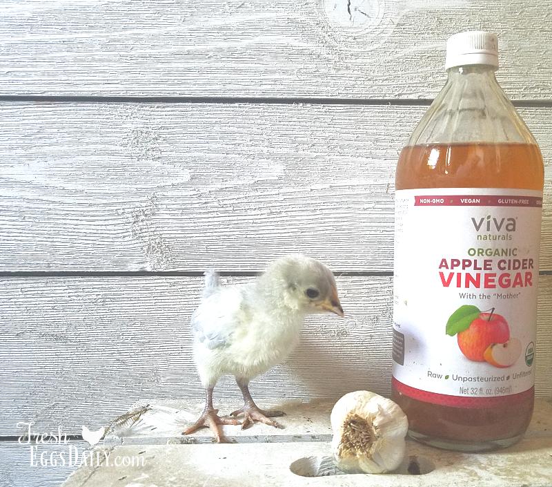The Holistic Trinity - Apple Cider Vinegar, Garlic and