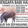 Sangat Mengerikan Ternyata Jika Babi di Konsumsi