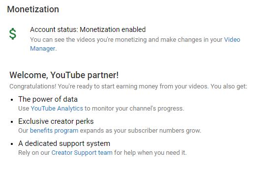 monetized diterima youtube