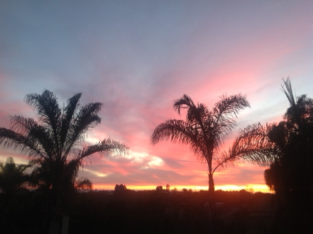 SoCal sunset: LadyD Books