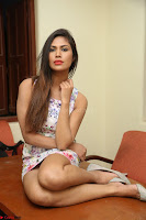 Nishi Ganda stunning cute in Flower Print short dress at Tick Tack Movie Press Meet March 2017 244.JPG