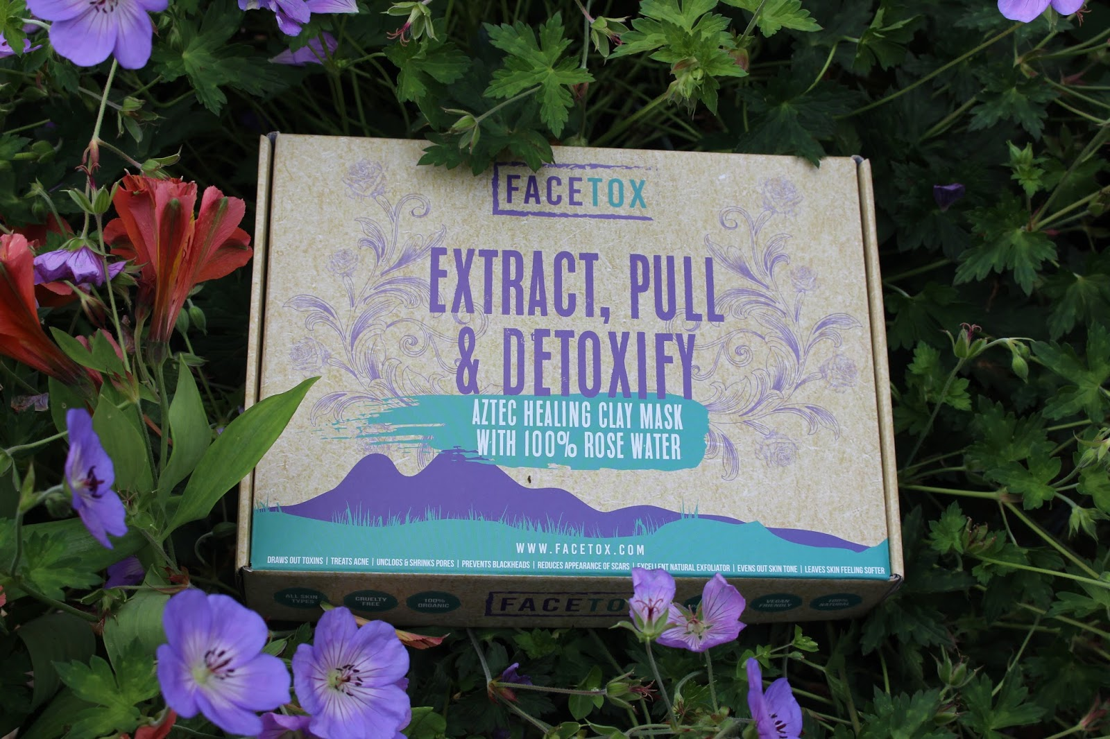 FACETOX REVIEW