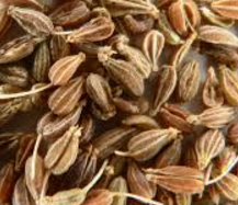 Aniseeds meaning in English, hindi, telugu,tamil,marathi,Gujrathi,Malayalam,Kannada