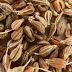 Aniseeds meaning in English, hindi, telugu, tamil, marathi, Gujrathi, Malayalam, Kannada