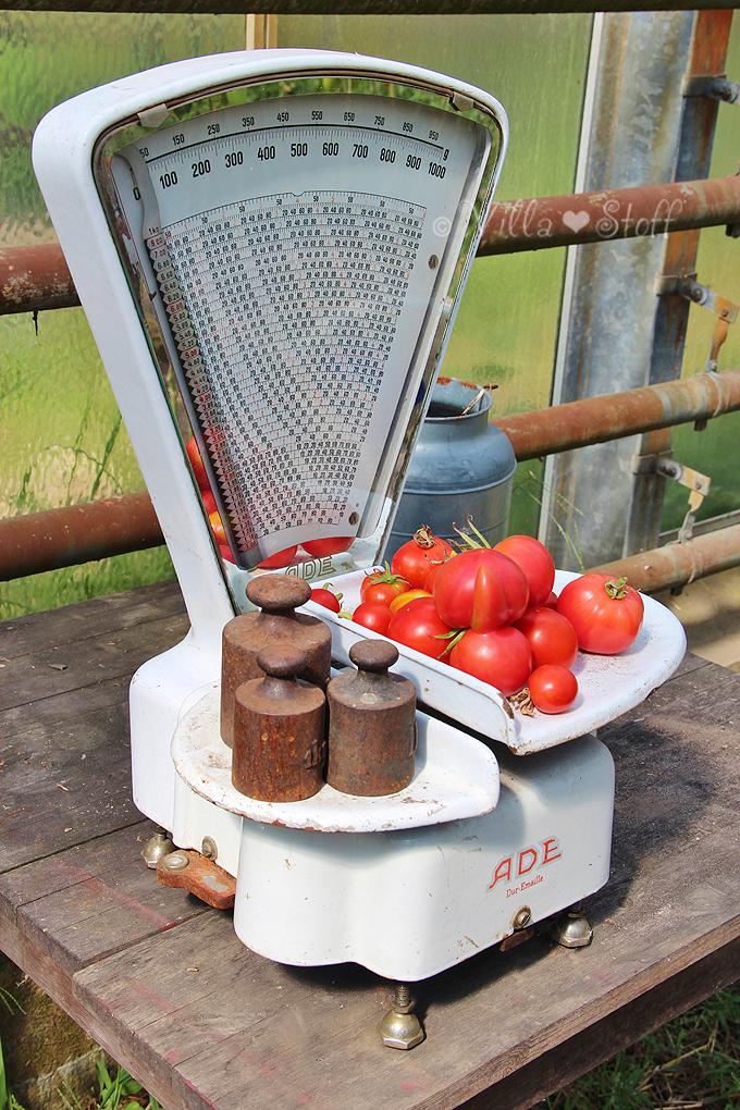 Rezept Tomaten-Brotsalat (Panzanella) | Tomatenretter (Hof vorm Deich)
