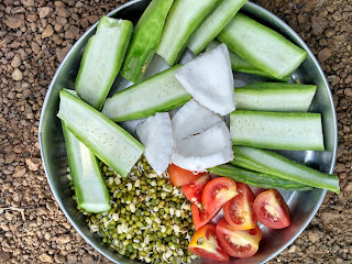 Ridge gourd, Green gram sprouts, Tomato, Coconut