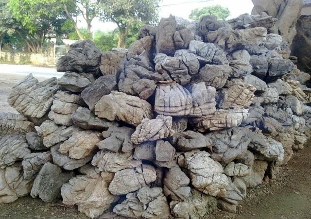đá da voi thường được dùng trong bể thủy sinh