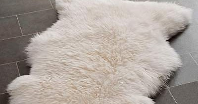 How To Stop An Animal Skin Rug From Shedding Art Of