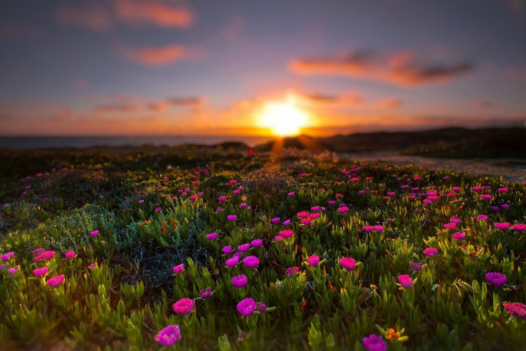 مناظر طبيعية جميلة بحجم كبير 2019 صور خلفيات شاشه Hd