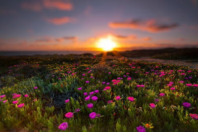 صور طبيعية جديدة , صور مناظر طبيعية جميلة