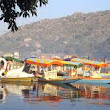 Honeymoon in Mount Abu