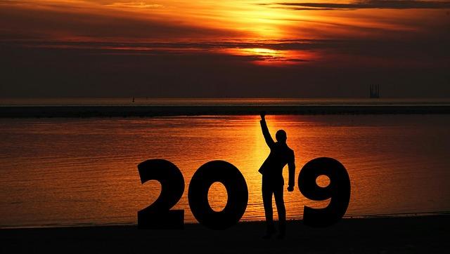 SELAMAT TAHUN BARU 2019 SAHABAT ANYO