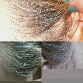 golden rose gray hair touch