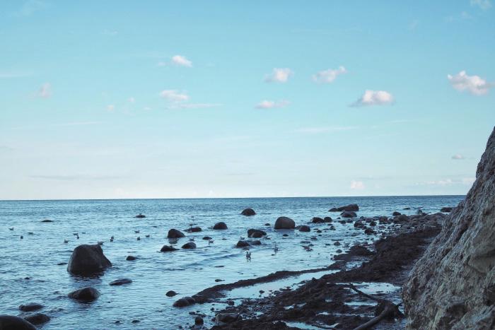 Promenade le long des falaises de l'île de Møn au Danemark
