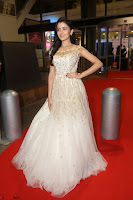 Rukshar Mir designer Anarkali Gown at 64th Jio Filmfare Awards South  2017 ~  Exclusive 089.JPG