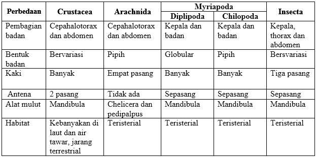 Apa yang Dimaksud Filum Arthropoda ? Karakteristik, Ciri Morfologi, Anatomi dan Fisiologin !