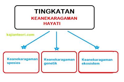KEANEKARAGAMAN HAYATI :: Pengertian dan Tingkatannya