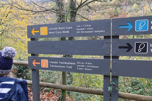 Cwmcarn Hikes