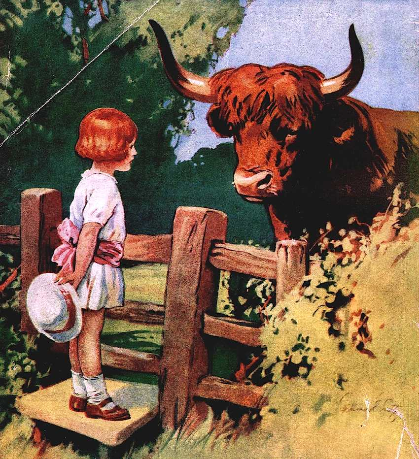 child meets bull illustration