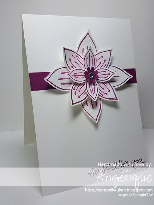 http://stempelkeuken.blogspot.com De Stempelkeuken Friends & Flowers, Rich Razzleberry, Festive Flower Builder Punch, blenderpen, Rhinestone Basic Jewels, Whisper White Thick Cardstock, Sheltering Tree