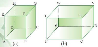 Gambar: Kubus (a) dan Balok (b)