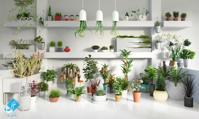 Pots and Plants Collection Archmodels vol 141