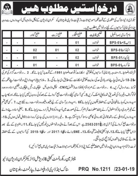 Jobs in live stock and dairy development makran division