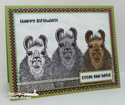 NCC Llama Tell You, NCC Sweet Shoppe Paper Collection, ODBD Custom Pierced Rectangles Dies, ODBD Custom Clouds and Raindrops Dies, Card Designer Angie Crockett