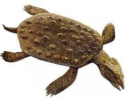 triassic prehistoric reptil