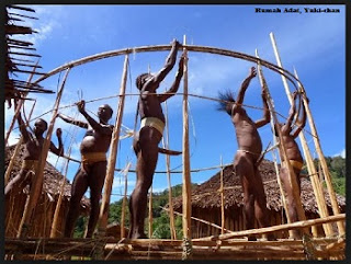 Desain Bentuk Rumah Adat Papua dan Penjelasannya, rumah honai