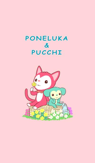 Poneluka & Pucchi 1