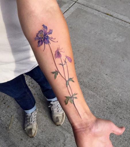 Teses de columbine flores