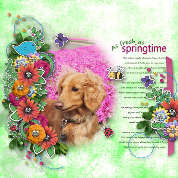 DSB  As fresh as springtime