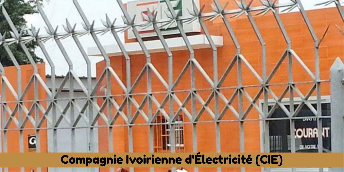 Nouveau : Quelles sont les peines sanctionnant les infractions sur l'électricité en Côte d'Ivoire ?