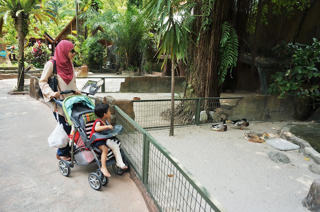 Gigih Bawak Budak Kena Simen Ke Blogger Event di Sunway Lagoon Themepark