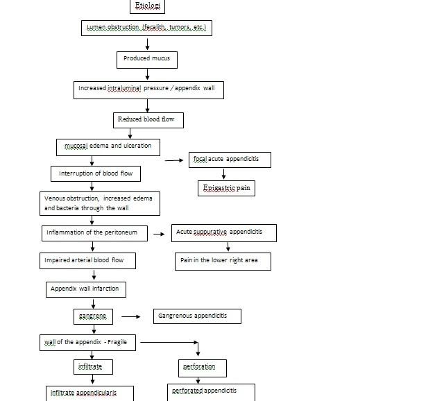 Nursing Care Plan Pathophysiology of Appendicitis