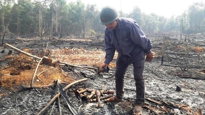 Gia Lai: Vụ cháy rừng tràm kho đạn CK54 - Đạn Phốt pho XM72 nổ gây cháy