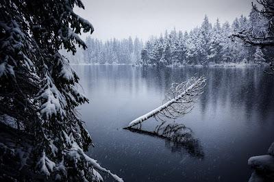 Lago con nieve y arboles helados