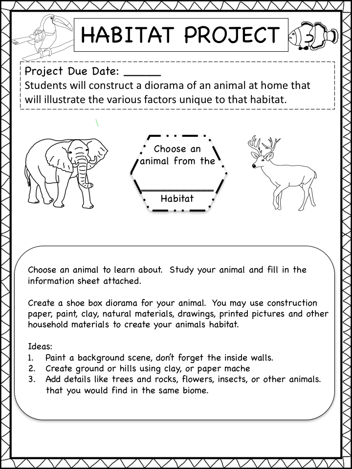 Kara's Happy Classroom: Animal Habitats Project
