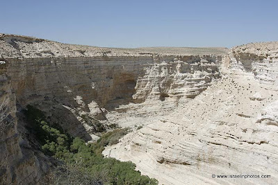 Located at the peak of Mount Negev, some 85 km south of the city of Beersheba.