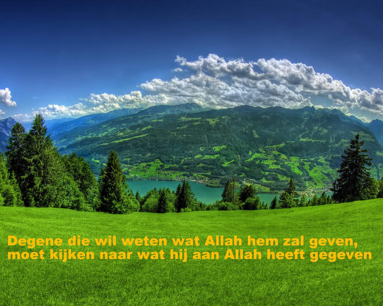 Citaten Uit De Talmoed : Citaten en wijze woorden uit de islam degene die wil