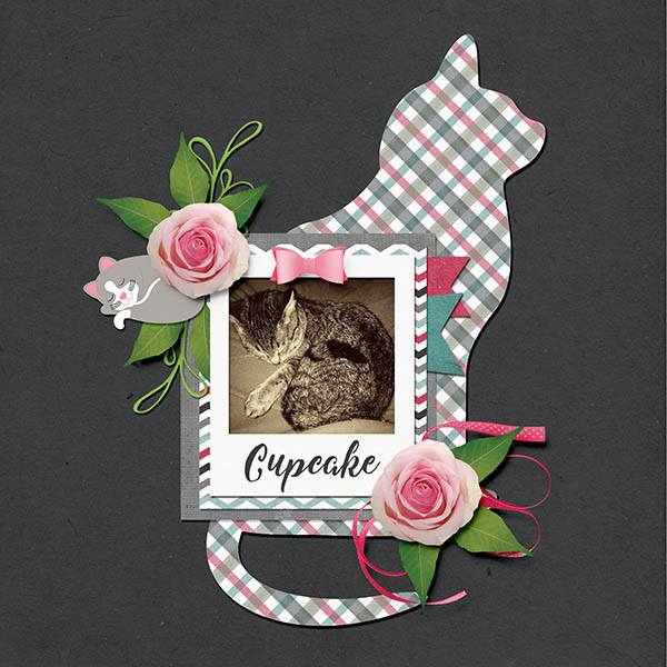 PuurFect Templates and Kit