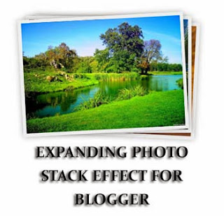 Animated Caption together with Description Hover Effect for Blogger Images Add Expanding Photo Stack Effect for Blogger
