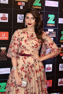 Bollywood Celebrities on the Red Carpet Of Zee Cine Awards 2017 Exclusive 123.JPG